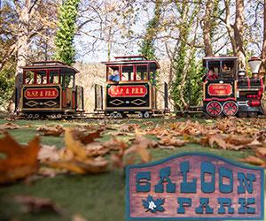 saloon-park